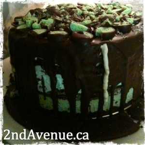 Mint chocolate ice cream cake
