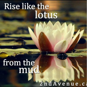 Rise like the lotus from the mud