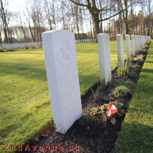 White grave markers against green grass and rich brown soil