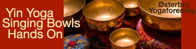 Singing bowls with text reading: Yin Yoga Singing Bowls Hands On